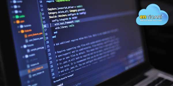 Yazılım Satış Programı Nedir