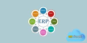 ERP Download Bilgi